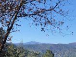Vanaf het boventerras zicht op de Mont Aigoual